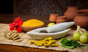 Ayurvedic Pharma Franchise in Andhra Pradesh