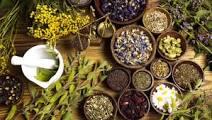 Top Ayurvedic Medicine Manufacturer In Bangalor