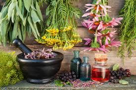 The Best Ayurvedic Medicine Manufacturers In Andhra Pradesh