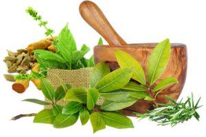 Ayurvedic Medicine Manufacturers In Baddi