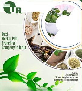 Ayurvedic PCD Company In Ambala
