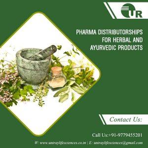 Herbal Hand Wash Manufacturers In Chandigarh