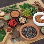 Ayurvedic Medicine Manufacturer in Kochi