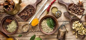 Ayurvedic Medicine Wholesalers in Delhi