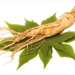 Ginseng Products Manufacturers in India