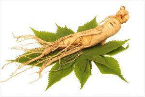 Ginseng Products Manufacturers & Suppliers in India