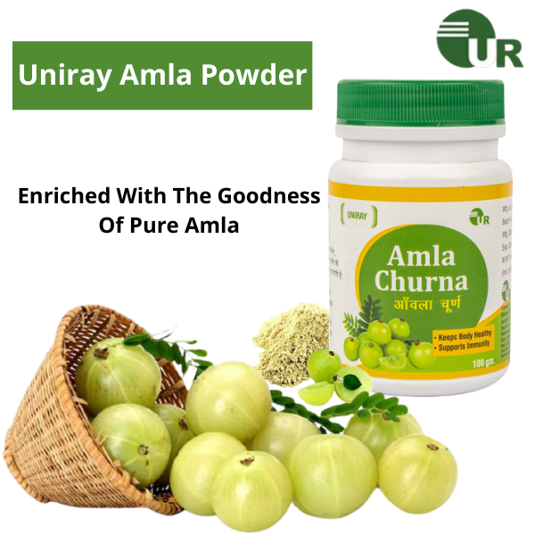 Amla Powder Manufacturer In India