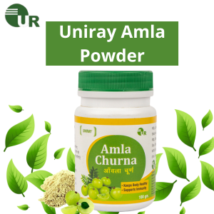 Amla Powder Manufacturer In India