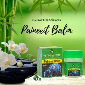 Ayurvedic Pain Balm Manufacturer in India