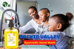Ayurvedic Hand Wash Manufacturer In India