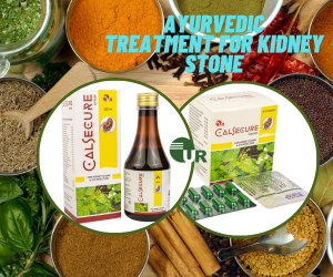 Best Ayurvedic Kidney Stone Remover Medicines Manufacturer in India