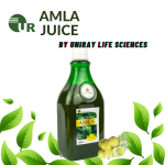 Top Amla Juice Manufacturers in India