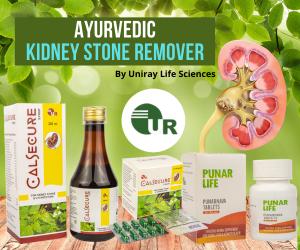 Best Ayurvedic Kidney Stone Remover Medicines Manufacturer in India