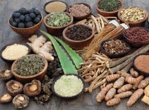Aurvedic Medicine Manufacturers In Jamshedpur