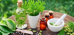 Top Ayurvedic Medicine Companies in India