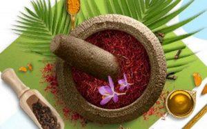 Ayurvedic Medicine Manufacturers in Vadodara