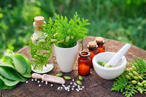 Ayurvedic Medicine Manufacturers In Paonta Sahib