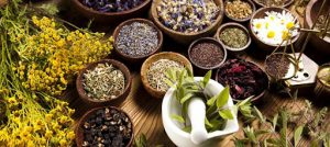 Ayurvedic Medicine Manufacturers In Ludhiana