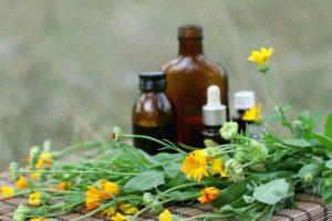 Ayurvedic Medicine Manufacturers in Sikkim